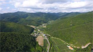 산림청 선도 산림경영단지 사업공모에 포항시 선정!